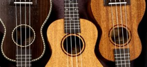 the beautiful world of ukulele and the different chords that you can learn