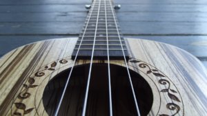 the ukulele is the best stringed instrument ever created